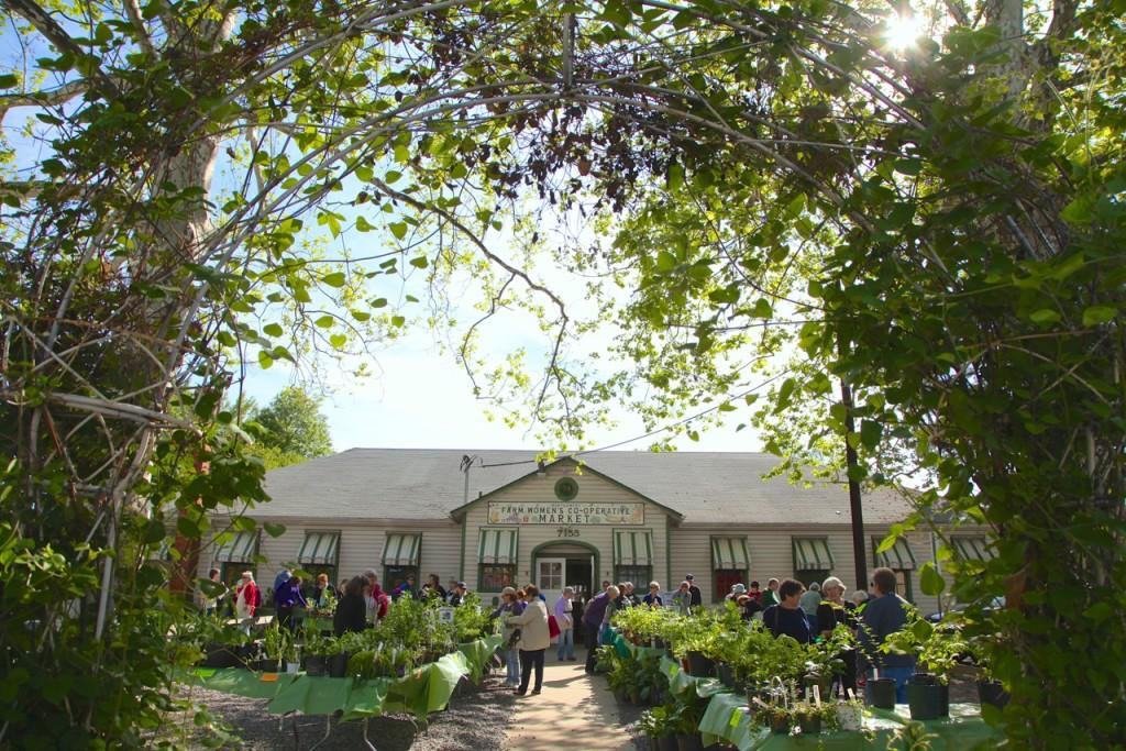 home bethesda community garden club